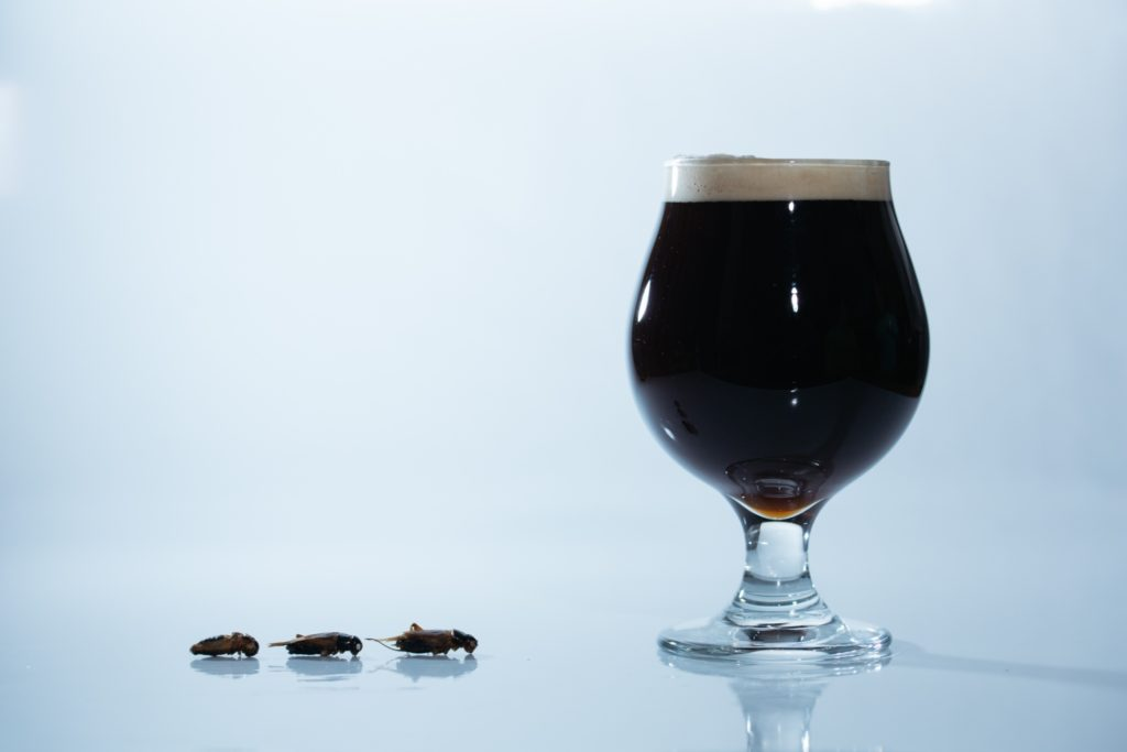 遠野醸造×ANTCICADA(コオロギビール/Cricket Dark Ale)_イメージ2