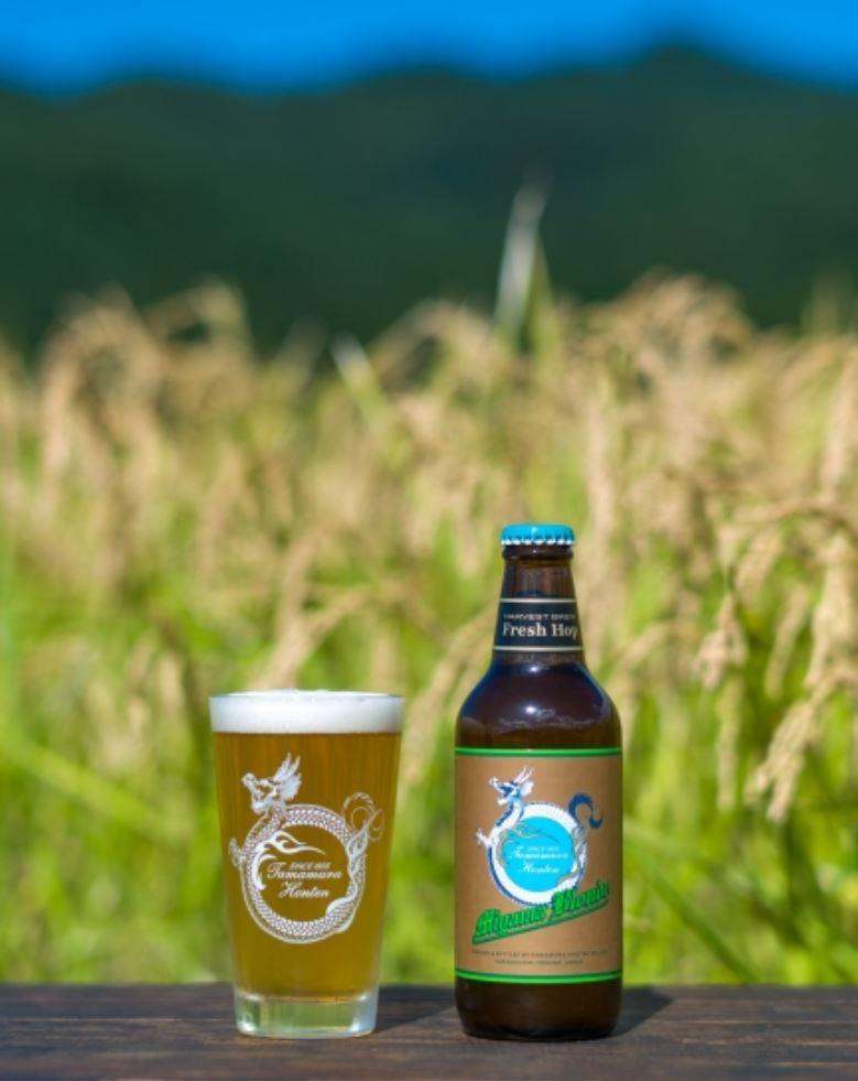 志賀高原ビール(ミヤマブロンドハーベストブリュー/2020)_イメージ1